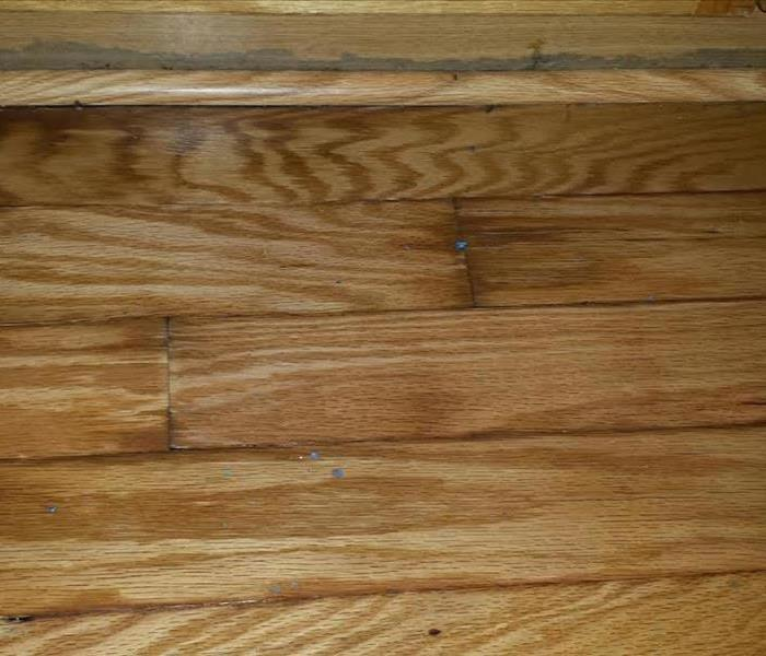 Water Affects Hardwood Floors