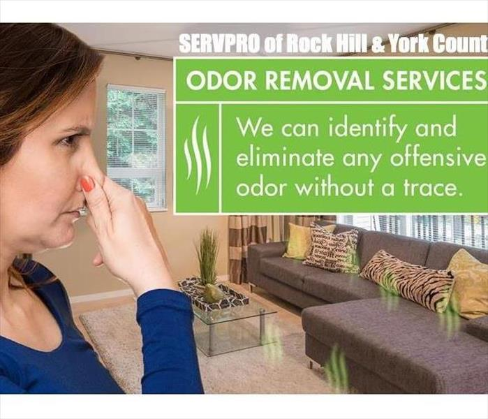 Odor Removal For Your Home Or Business