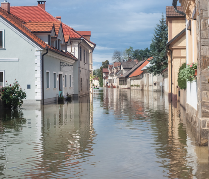 General Flood Damage can be Costly: Here are a Few Tips on How to Decrease Your Losses in Rock Hill