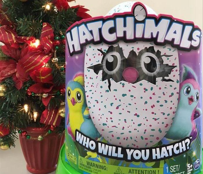 Community Free Hatchimal Giveaway