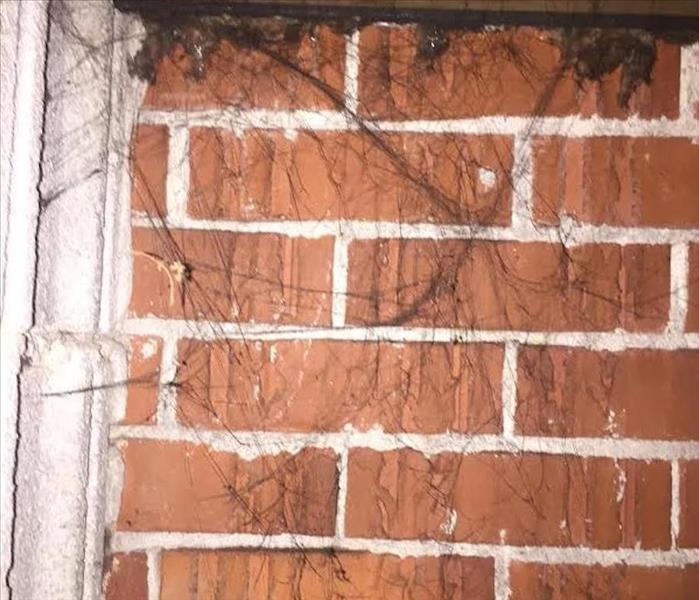 Fire Damage Understanding the Different Types of Smoke Residue After Fire Damage to Your Fort Mill Home or Condo