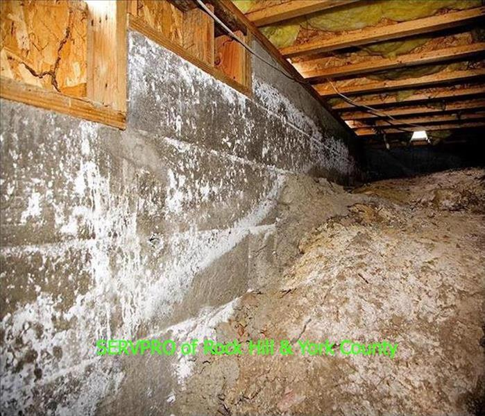 Water Damage Crawl Space Water Damage In Your Baxter Village Home