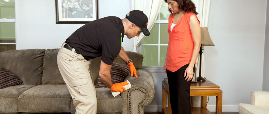 Fort Mill, SC carpet upholstery cleaning